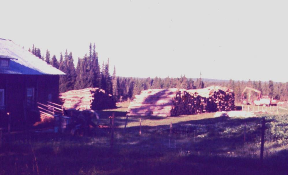 Nyodlingsvirket 1969