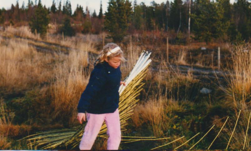 Anna plockar ner stängsel juli -89. samlar stolpar i ena handen