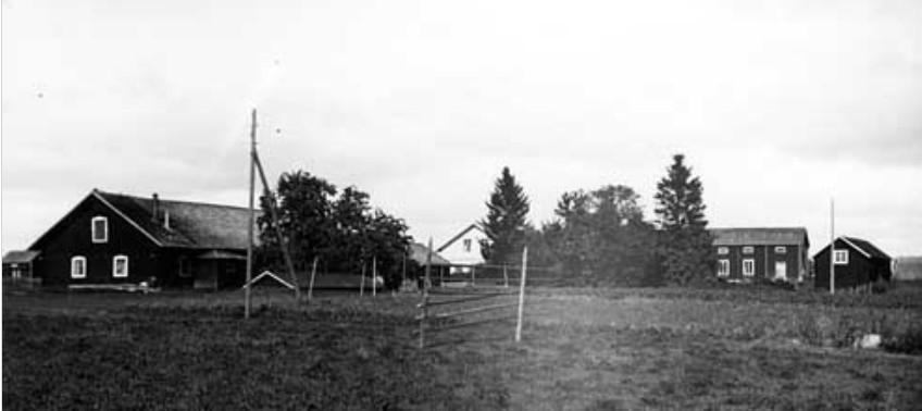 L J Anderssons gård 1920-08-29