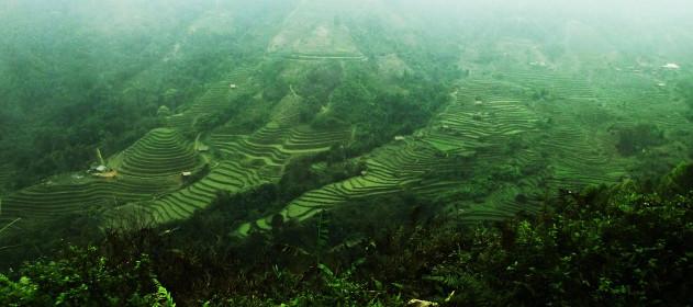 Bergjordbruk Nordvietnam