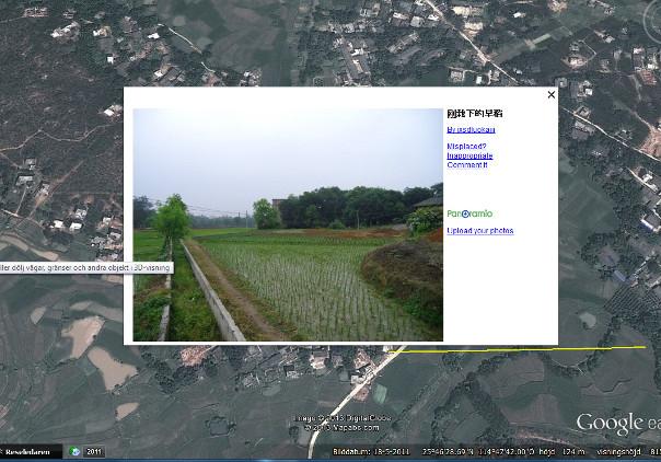 Ris i Guanzhou, s Kina