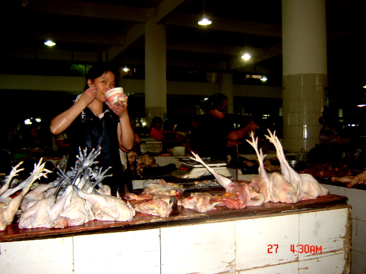 Kinamat fjäderfä 2010