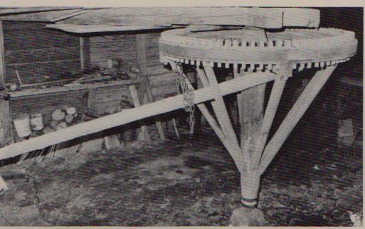 dragdjursvandring Sverige 1800-tal